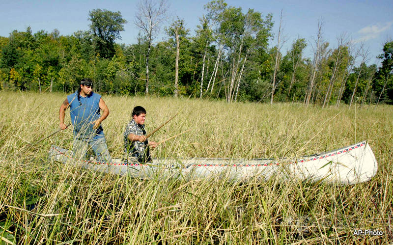 Wild rice harvest, AP photo